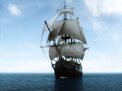 """A """"court ship"""""""